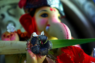 Why are we advised to keep only left curled trunk image or idol of Lord Ganesha at our home?