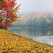 """Autumn Fog""   (Lost Lake) - Michigan's Upper Peninsula"
