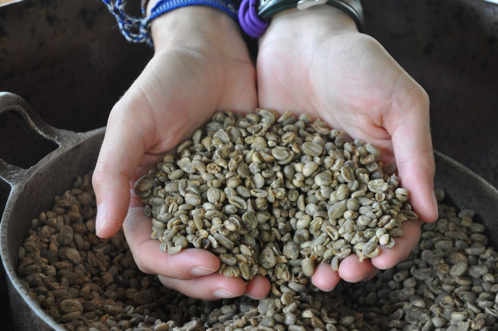 Dried and washed coffee beans on the farm