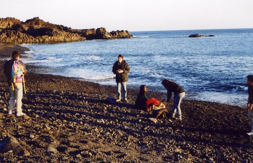 canarie_02
