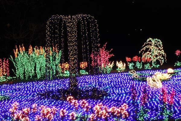 garden d 39 lights festival bellevue events happenings attractions