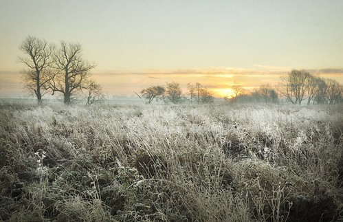 cold and frosty dawn..