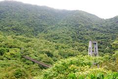 八通關越嶺道的鹿鳴吊橋(資料照片,林務局提供)