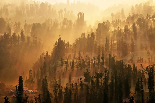 sunrise indonesia volcano rays bromo cemorolawang