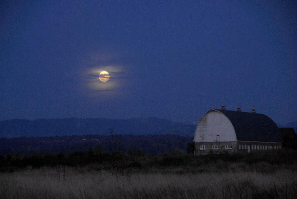 Whoa, Moon's Up.