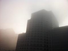 Foggy CW 1
