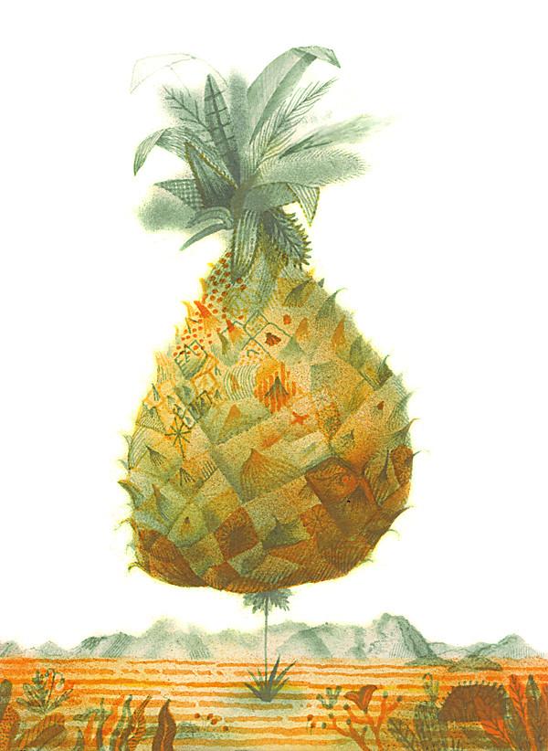ananas-web