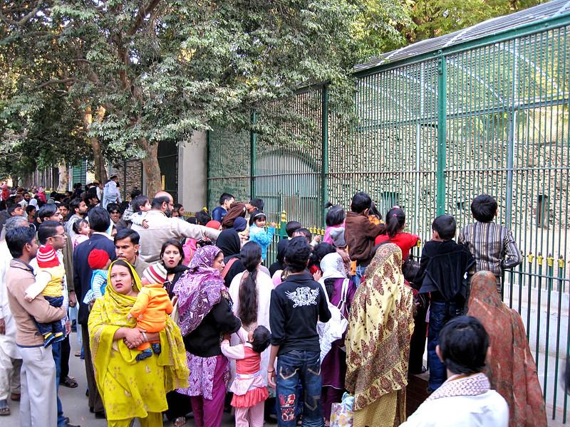 Karachi Zoological Garden sajjad.cdgk (15)