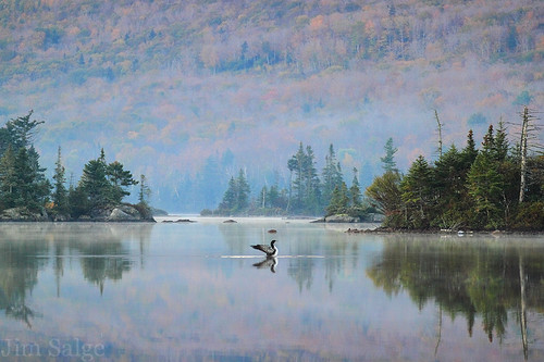 Morning Stretch - Long Pond, Benton, NH