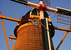 Molens - Windmills