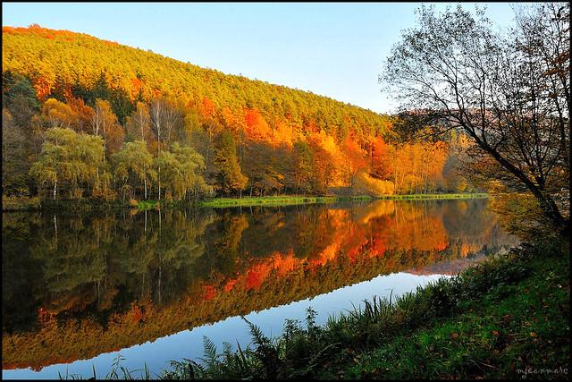 Reflet d'automne des Vosges du Nord