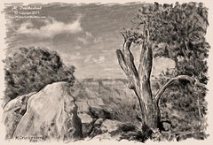 Grand Canyon Arizona, a digital pencil drawing