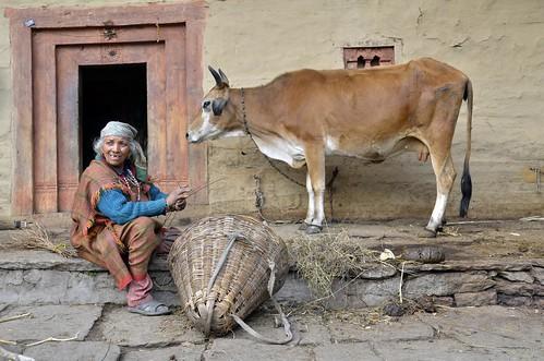 NP Himachal Pradesh 75