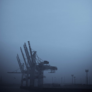 Aliens in the fog