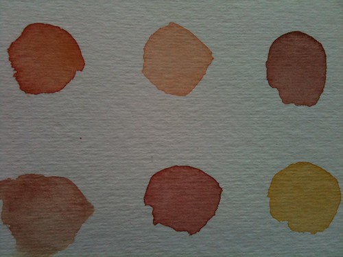 Tea Colour Swatches