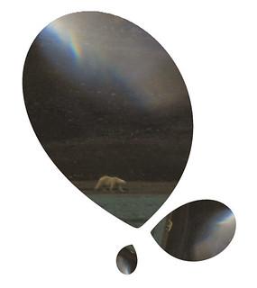 Arctique-29