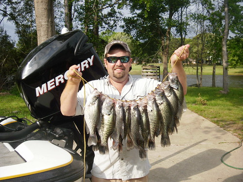 The spawn is on lake livingston crappie fishing texas for Lake livingston fishing report
