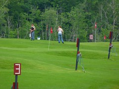 baseball field(0.0), golf(0.0), pitch and putt(1.0), sport venue(1.0), grass(1.0), individual sports(1.0), sports(1.0), recreation(1.0), outdoor recreation(1.0), competition event(1.0), golf course(1.0),
