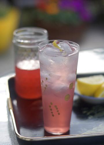 Rhubarb Gin Sparkler