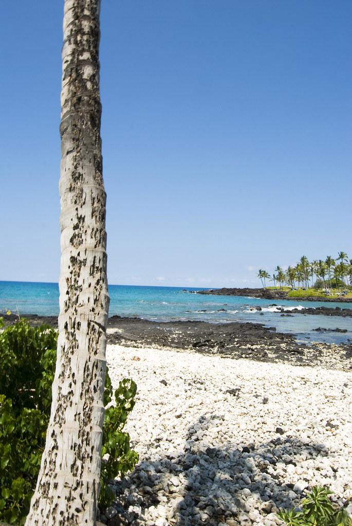 big island personals