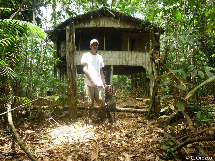 Google's owner and trainer, Javier Carazo, with Google at La Selva Biological Station