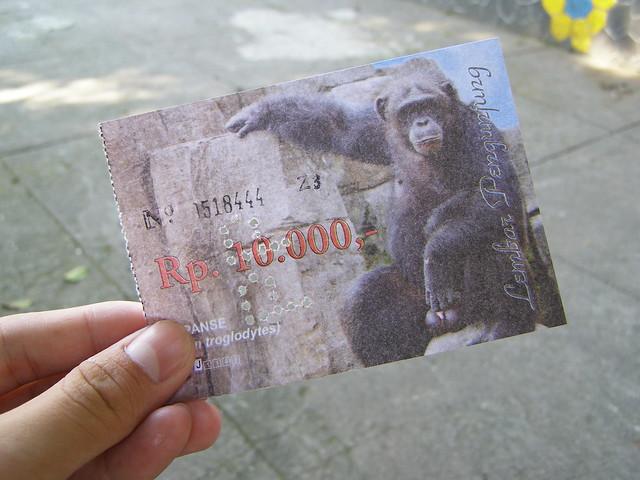动物园的门票