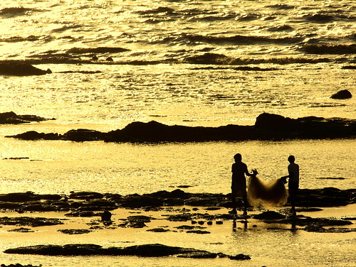 sunset sea net beach silhouette golden evening fishing fishermen arabian daman fishingnet arabiansea topshot castinganet sharadgupta