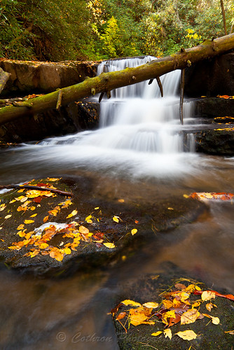 autumn usa fall nature water georgia waterfall outdoor clarkesville rabuncounty johncothron wildcatcreekroad cothronphotography siblingfalls