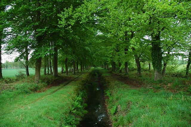 Patrimoine naturel et environnement de la Haute Bretagne