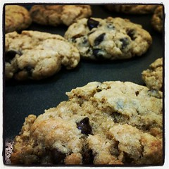 chocolate chip cookie, oatmeal-raisin cookies, baked goods, cookies and crackers, food, dessert, cookie, snack food,