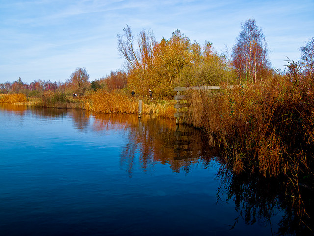 Herfst / Fall