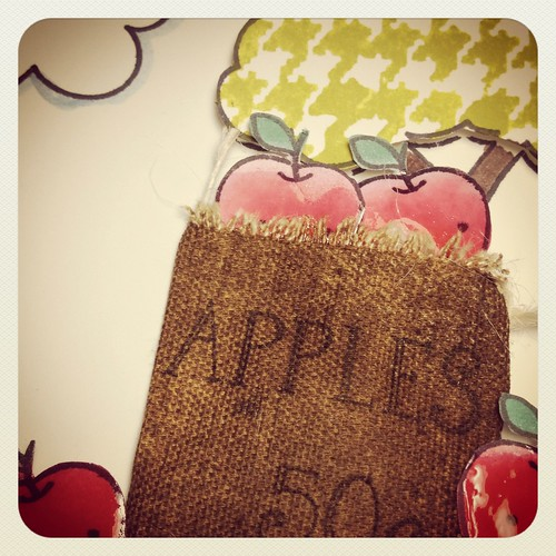 apple sack_closeup