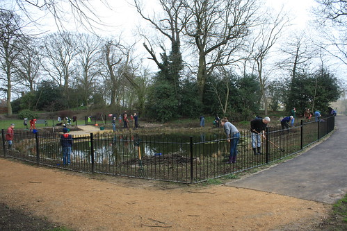 The Lilly Pond March 2012