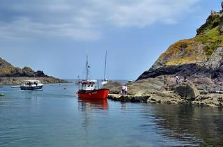 Polperro at Low Tide. Nikon D3100. DSC_0651