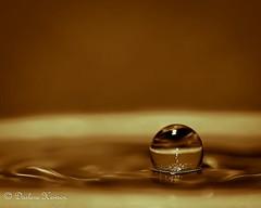Brown Waterdrop