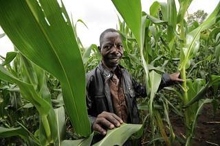 NP climate-smart farm 11