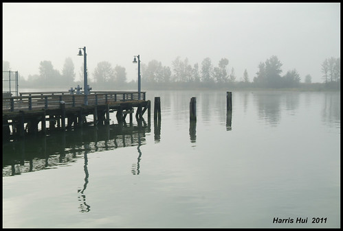 When Colors Are Muted - Steveston 8217e