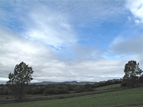 trees sky hills fields fermanagh drumany troublesireland