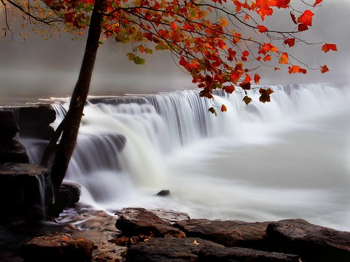 longexposure autumn tree fall water leaves fog canon waterfall waterfalls arkansas canondslr northwestarkansas canon60d naturaldamarkansas