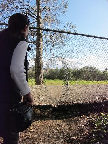 fence IMG_8299