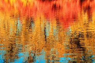 Autumn water colours