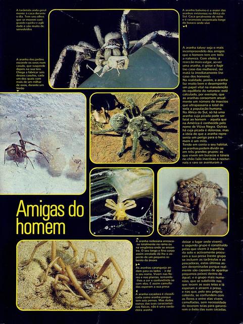 Panorama, nº8, Junho 1975 - contra-capa