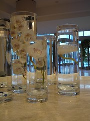 Water vases in Westin, Charlotte