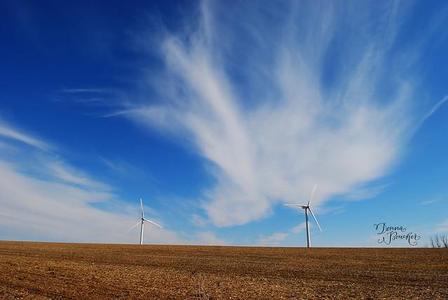 windmills-lo