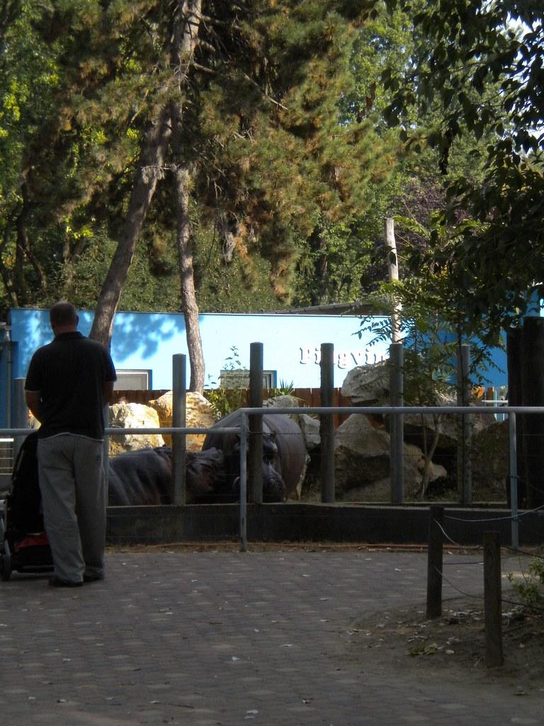 Zoo de Debrecen