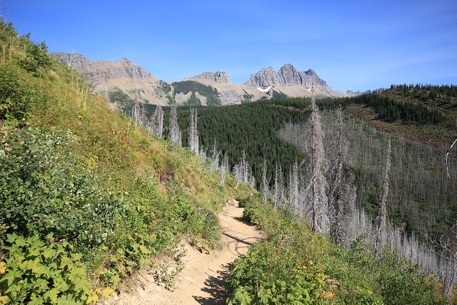 views from The Loop Trail ~ Glacier National Park