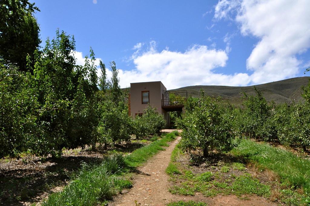 The Lentelus Wine Farm Guest House in Barrydale