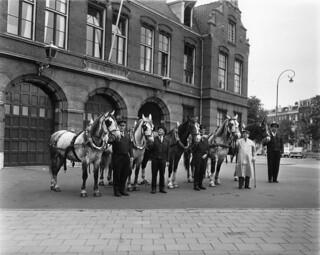 07-31-1965_20115 Paarden van Heineken