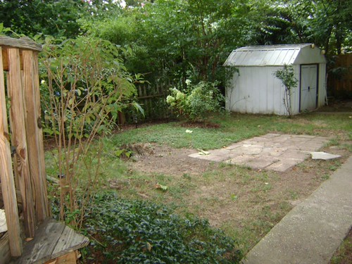 before_backyard
