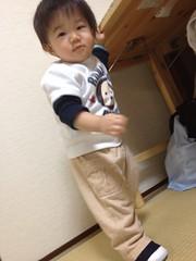 とらちゃんの初めての靴(2011/11/14)